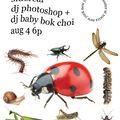 sidereal: dj photoshop + dj baby bok choi