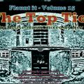 Flaunt it Volume 15 - The Top Tier - Mixed by Nev Ball