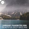 January Favorites 2016 - Beautiful Deep Bass Mix