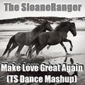 Make Love Great Again (TS Dance Mashup)