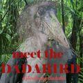 meet the dadabird -djbirdsong.dadahu