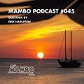 Cafe Mambo Ibiza Podcast #045 - Guest Mix from Erik Hagleton