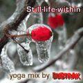 Still-Life-Within Yoga Mix