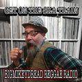 """25 Bigmikeydread Reggae Radio - Get on the SKA Train . . . pure 7"""""""