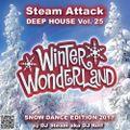 Winter Wonderland - Steam Attack Deep House Mix Vol. 25