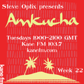 Steve Optix Presents Amkucha on Kane FM 103.7 - Week Twenty Two