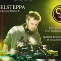 Rebelsteppa (+ special guest Prophet P) #dubranach