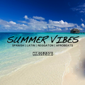 Summer Vibes MIx - DJ Manny B (Latin / Spanish Mix)