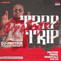 Dj Protege - PVE Vol 54 Trap Trip 2