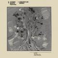 017 Lucid Stannard - The Kapok Tree (Ceiba pentandra)