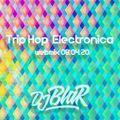 Electronica / Trip Hop _ webmix session #15 _ (08/04/2020)