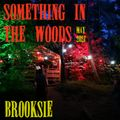 Brooksie - Something In The Woods - May 2021