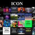 THE BEST OF THE ICON 2018 FREESTYLE MIX! (BPM 75-120)