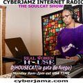 Cyberjamz Radio presents The JamDEMIX Music Marathon feat. DjHousecat(la gata de fuego)