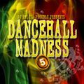LOST FILES:  DANCEHALL MADNESS #5 [mixed 2010]