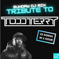 Todd Terry Tribute Livestream DJ Mix - 4 Decks / 33 tracks - In My House with Steve Canueto