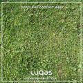 Pistolero Podcast 006 - LuQas Spring 2012 Mix