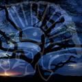 coliseum  kuki carlos forun javi aznar charly ivan x-treme (cd de regalo con la entrada) vol5