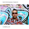 Microondas Radio 148 / Caballo mix