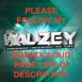 DJ Walzey - Random Mixtape