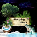 Stopping Wired