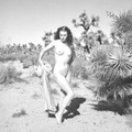 Ghost on the Highway: A Palm Springs Travel Mix