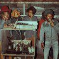 DJ Flash Ras - Roots Rockers #3