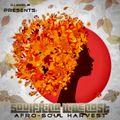DJ Angel B! Presents: Soulfrica Vibecast (Episode XCV) Afro-Soul Harvest