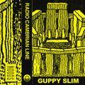 Radio Cambrian Line w/ Guppy Slim : 25th July '19