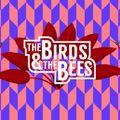 Kalle Kuts (G.I. Disco/Berlin) at The Birds & The Bees Season Closing 2018