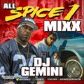 ALL SPICE 1