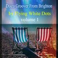 Lost In The Vault - The Flying White Dots - The Disco Mashup Groover- Live Brighton 2015