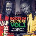 Roots IN Culture Vol 1. Selector Jnr B Meets Dj Raskull