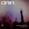 Driving Euphoria