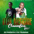DJ TSUNAMI FT DJ PWENYA - ITAL REGGAE CONNECTION VOL 1