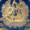 Gentle Vinyasa Yoga Flow - Tara
