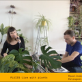 PLUIES live with plants ft. Strapontin [Live] - 6/05/20
