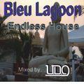 Endless house @ The Blue lagoon