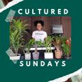 Cultured Sundays - Deep House Event - Cape Town - DJ Roxcizzle