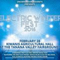 Electric Winter Fest 2015 Mix