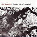 Magnificent Dreams - The Advent mix