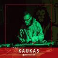 Kaukas - Revolution Festival 2018 (HC promo mix)