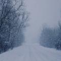 Tommc - Snow Storm 02