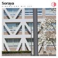 DIM239 - Soraya