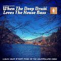 Liquid Drum&Bass - When The Deep Drum Loves The House Bass Vol.16