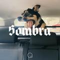 Sombra #56 by Shcuro (06.10.20)