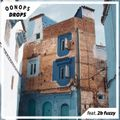 Oonops Drops - World Trail 9