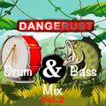 Drum & Bass / Jungle Mix Vol.2