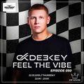 Deekey - Feel The Vibe 050 [Record VIP House] (22.03.2018)