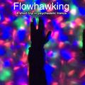 FLOWHAWKING- Survival Evasion Resistance Escape